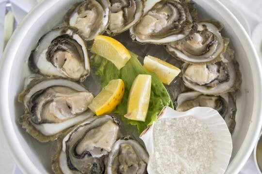 The Festival of Ston Oysters